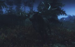 72850_2014-08-20_00009 (thoorum) Tags: skyrim tes tesv dragons theelderscrolls heroicfantasy magic creatures fights