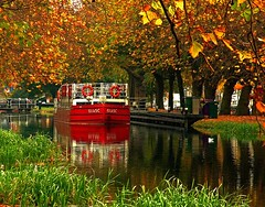 552880318871103 (leoniefeatherson2887) Tags: street travel bridge autumn ireland red dublin green tourism water leaves reflections reeds gold canal europe grand bistro eire barge baggot themoulinrouge superhearts