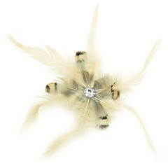 Feather hair clip 2A