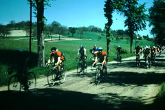 5-27-1954- Bicycle Race- Loire- France (2) (foundslides) Tags: lafrance french france europe european trip vacation foundslides irmalouisecarter american tourists tourist tourism holiday europeanvacation kodachrome kodak film snap snaps pics pix pictures photos photo westernfrance brittany bretagne norman normandie normandy 1954 may retro vintage 1950s irma louise slidefilm redborder transparency oldphotos slides johnrudd irmalouiserudd analog slidecollection irmarudd