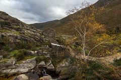 Outono en Ribeiro de Baixo. (hilarioperez) Tags: portugal landscape montaa outono granangular serras paisaxes ribeirodebaixo tokina1116 hilarioperez