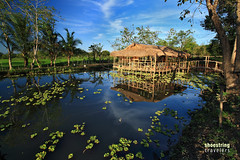 Fish Pen and Hut (engrjpleo) Tags: travel water landscape outdoors landscapes farm philippines farming fishpond waterscape nuevaecija fishpen centralluzon palayancity