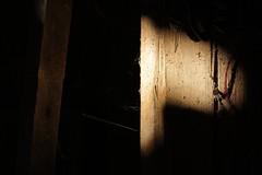 Altes im Scheinwerfer (markus_r) Tags: wood old österreich alt nail landwirtschaft spot holz niederösterreich nagel holzwurm weinviertel timberworm