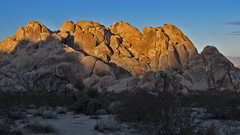 Indian Cove Campground, Evening Light (Mike Dole) Tags: california joshuatreenationalpark indiancovecampground