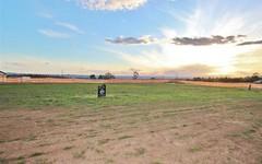 203 Sorell Way, Harrington Park NSW