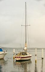 Tall-mast_DSC5683 (Mel Gray) Tags: swansea lakemacquarie newcastle newsouthwales lake water yacht