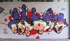 Lion (Capras Crew) Tags: 2016 capras caprascrew europa graffiti italy lion neverdie nofake original truecaprasneverdie world c clash clashpaint backontrack