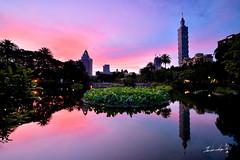 Sunrise @ Taipei 101 Skyscraper (Jennifer ) Tags: taipei101      carlzeissdistagont15mmf28zf nikond4s carlzeiss zeiss distagon landscape nature t