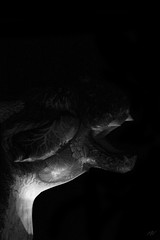 (Mallory Walle) Tags: street bridge people blackandwhite music moon white man black france art colors strange leather kids night lune canon eos lights flying high flickr king noir dragon noiretblanc circus couleurs grand guys structure queen helium pont enfants foule rue reine nuit cirque blanc invasion personnes immense impressive hommes femmes lumires gens musique inflate facebook roi volants spectacle inflated gonflable contemporain batiments volant spectateurs echasses graulhet plasticiensvolants plasticien gonfl plasticiens tange canoneos550d