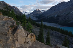 IMGP4970 (donrawson) Tags: lake glacier peyto canadianrockies