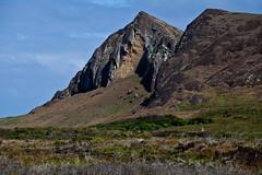 rapa nui 213 14 04  0566 (moments caught in flight) Tags: rapanui easterisland moai ranoraraku quarry