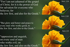 Jew first, and also for the Greek. (Jouni Niirola) Tags: bible yeshua