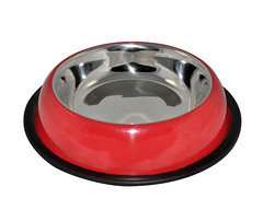 SKU 300: aGLOW Belly Non Skid Bowls with color (TranscendentPet) Tags: dogs cats dog cat rabbit guinea pig birds parrot petbowls feeders waterers feedingtime