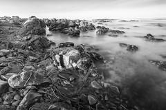 Primeval Present (Harold Wycoff) Tags: cambria moonstonebeach centralcoast californiacoast ocean sea texture rock beach longexposure 10stopndfilter
