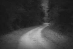 *** (pszcz9) Tags: polska poland przyroda nature parknarodowy nationalpark droga road pejza landscape wiosna spring las forest blackandwhite monochrome sony a77 beautifulearth bw