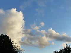 Nous dnions sur la terrasse. (Marie-Hlne Cingal) Tags: cagnotte paysdorthe landes aquitaine 40 france sudouest nwn clouds sky