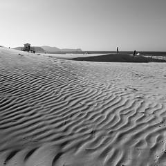 Brincadeira na Praia (Luciano Barbosa Carvalho) Tags: leica dlux5 cabo frio brasil black white dune lines