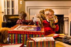 20141201_Christmas Decorating_IMG_0228 (Tom Cannon) Tags: louisvillephotographer kentuckyphotography kyphotography louisvillephotography kentuckykyphotographer thomascannonphotographyllc thomascannonphotography