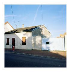 Lihons, novembre 2014, arbre (Guillaume Abgrall) Tags: film rolleiflex kodak ektar tessar 35t