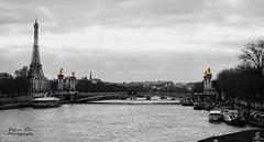 Ponte Alexandre III - Parigi (Stefano Fili Photography) Tags: bridge paris nikon torre tour eiffel ponte senna parigi alexanderiii alessandroiii d7100