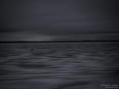 Gray scales (bnq.hendrix) Tags: winter sea snow ice monochrome stone clouds landscape frozen heaven stones gray