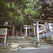 "Mikami Shrine, Kyoto • <a style=""font-size:0.8em;"" href=""http://www.flickr.com/photos/128114197@N03/15801682840/"" target=""_blank"">View on Flickr</a>"