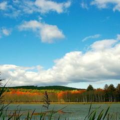 Autumn (twiztid_lotus1) Tags: autumn trees nature beautiful fallcolors massachusetts newengland ware rt9 quabbintower