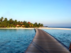 Athuruga-maldive (_Frencyna_) Tags: uploaded:by=flickrmobile colorvibefilter flickriosapp:filter=colorvibe