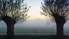Foggy Twente (ace_dave) Tags: netherlands twente overijssel denham foggylandscape winterinthenetherlands nikon1aw1 nikon1aw11275f3556 fogintwente winterintwente