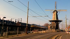 Laatste zondag dat de treinen over de Spoorviaduct in Delft gaan rijden (Nederland) (reinhard.007) Tags: nederland eisenbahn delft bahn railways windmolen ferrovia nederlandse cheminsdefer virm phoenixstraat spoorzone sporwegen windmohlen sporwegviaduct