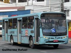 2219 (Guilherme Rafael) Tags: apache vip caio volksbus induscar 17210od rodovel