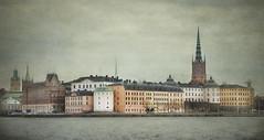 Desde el ayuntamiento (pimontes) Tags: city ciudad textures fro texturas estocolmo suecia arquitecture ayuntamiento hss slidersunday