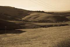 Val D'Orcia (Sandro Albanese) Tags: bw italy verde green landscape italia tuscany crete siena toscana valdorcia paesaggi paesaggio biancoenero cretesenesi orcia valorcia