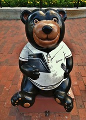 Comcast Bear (ArtFan70) Tags: bear sculpture usa art animal statue burlington america computer comcast vermont unitedstates cityhall laptop newengland cable remotecontrol vt telecommunications cablecompany laptopcomputer massmedia internetserviceprovider oldnorthend churchstreetmarketplace burlingtoncityhall wiegers comcastcorporation massmediacompany comcastbear kathrynwiegers