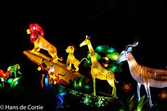 Chinees Lichtfestival 2015 Utrecht (Hans de Cortie) Tags: color utrecht nederland colorexplosion chinalight lichtspectakel chinalightutrecht