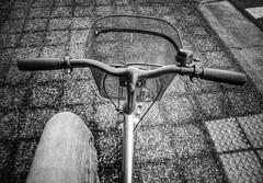 Riding My Bicycle (Jon-F, themachine) Tags: bicycle japan asian asia sony bicycles nagoya  pointandshoot nippon japo oriental orient fareast  aichi nihon   chubu  2014 japn   landoftherisingsun  chuubu   xapn jonfu  snapseed dscwx70