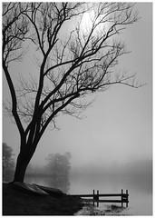 Beaver Lake (Joe Franklin Photography) Tags: blackandwhite bw lake water asheville northcarolina carolina beaverlake westernnorthcarolina joefranklin almostanything wwwjoefranklinphotographycom