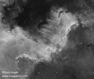 The Cygnus wall complex in NGC7000 in mono