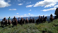 Forest Range Review Fogg Hill july132016 (Intermountain Region US Forest Service) Tags: horse manager review team forest