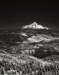 Mt Hood - The Lonely Mountain (mjardeen) Tags: sony fe 90mm 28 macro g oss sonyfe90mm28macrogoss flower bush plant hydrangea on1 on1effects wa washington a7ii a7m2 mountain mthood bw black white blackandwhite ir infrared converted lifepixel landscape landscapesshotinportraitformat
