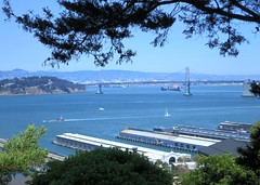 Oakland Bay Bridge from Telegraph Hill (Ruth and Dave) Tags: oaklandbaybridge telegraphhill sanfrancisco bay view sea ocean seascape oceanscape tree docks piers seafront waterfront