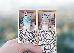 blue or pink (free_dragonfly) Tags: miniature toys animals cute cats gray tabby handmade polymer clay