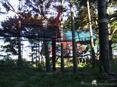 Groix Parc  Bout 17 (DD 29) Tags: bretagne morbihan le groix parcbout filet arbres jeux