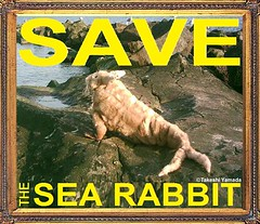 SAVE THE SEA RABBIT, official poster, design by Dr. Takeshi Yamada. Coney Island Sea Rabbit Center.  2014-02 FRAME FINAL (searabbits23) Tags: searabbit seara takeshiyamada  taxidermy roguetaxidermy mart strange cryptozoology uma ufo esp curiosities oddities globalwarming climategate dragon mermaid unicorn art artist alchemy entertainer performer famous sexy playboy bikini fashion vogue goth gothic vampire steampunk barrackobama billclinton billgates sideshow freakshow star king pop god angel celebrity genius amc immortalized tv immortalizer japanese asian mardigras tophat google yahoo bing aol cnn coneyisland brooklyn newyork leonardodavinci damienhirst jeffkoons takashimurakami vangogh pablopicasso salvadordali waltdisney donaldtrump hillaryclinton endangeredspecies save