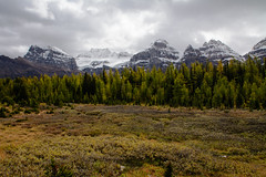 Larch Valley (tylerhuestis) Tags: banff banffnationalpark alberta canada mountains nature valleyofthetenpeaks