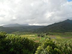 The Hanalei Valley (jimmywayne) Tags: hanalei hawaii kauaicounty kauai landscape hanaleivalley