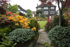 View towards house in late spring (Four Seasons Garden) Tags: four seasons garden uk england west midlands walsall spring 2016 japanese maples acers leaves azalea flowers ornamental conifers colour