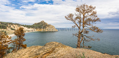 Lonely burnt pine on the Cape (Ivanov Andrey) Tags: lake water rock cliff slope shore stone pinetree pinewood fire tree bay surf wave sky cloud horizon sun sunset evening blue skyblue green red black trunk branch crown leaf bark rootwood wind coast coastline landscape shade wildlife travel tourism summer north lakebaikal russia