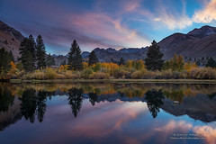 Echoes of Light (Darvin Atkeson) Tags: lake pond shore sunset peaks reflection autumn fall color eastern sierra nevada mountains desert aspen gold golden california grove stand trees trunk bark white mono county darv darvin lynneal atkeson yosemitelandscapescom