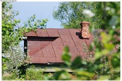 Kirzhach (Mika Stetsovski) Tags: village    house summer